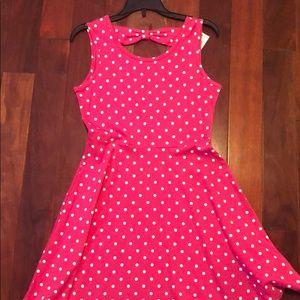Polka Dot Pink Skater Dress